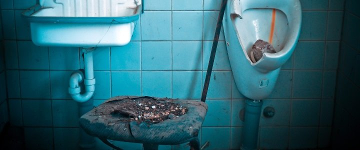 urine and faeces cleanup